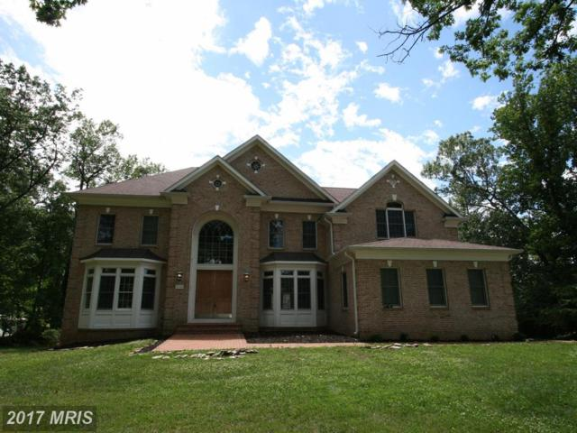 3700 Annandale Road, Annandale, VA 22003 (#FX9924515) :: Pearson Smith Realty