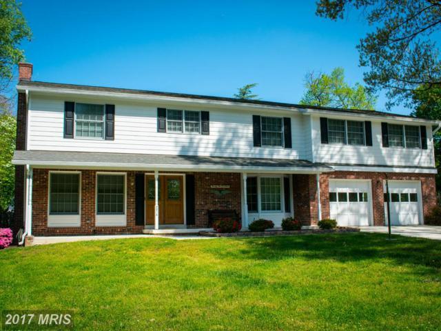 2214 Creek Drive, Alexandria, VA 22308 (#FX9925252) :: Pearson Smith Realty