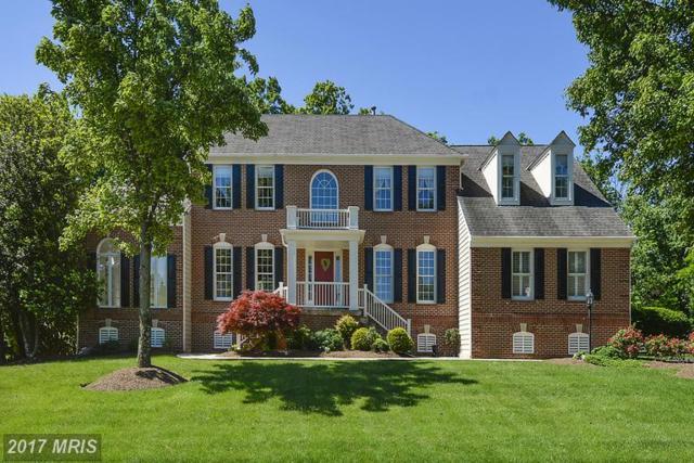 15557 Smithfield Place, Centreville, VA 20120 (#FX9950565) :: LoCoMusings