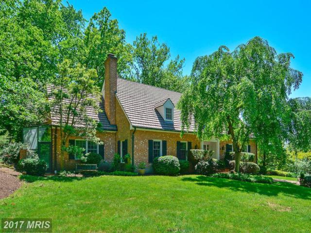 11635 Blue Ridge Lane, Great Falls, VA 22066 (#FX9951138) :: Pearson Smith Realty