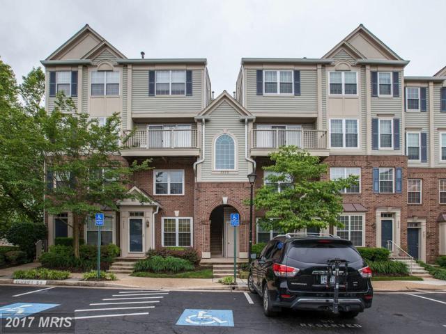 5975-E Terrapin Place #303, Alexandria, VA 22310 (#FX9958256) :: Pearson Smith Realty