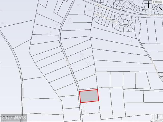 5917 Doyle Road, Clifton, VA 20124 (#FX9958569) :: Pearson Smith Realty
