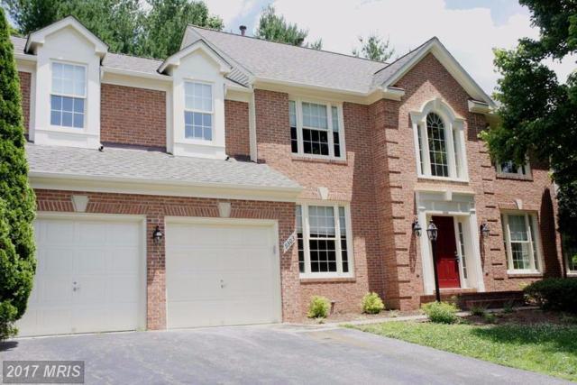 9303 Braymore Circle, Fairfax Station, VA 22039 (#FX9967371) :: Browning Homes Group