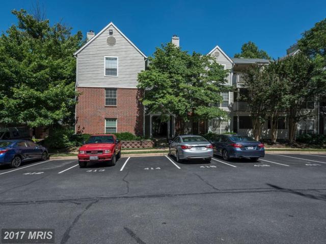 3909 Penderview Drive #1921, Fairfax, VA 22033 (#FX9970009) :: LoCoMusings