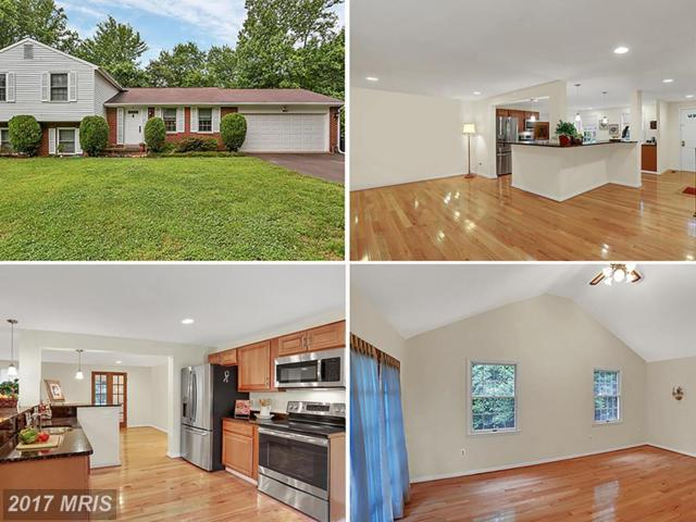 7820 Freehollow Drive, Falls Church, VA 22042 (#FX9971682) :: Pearson Smith Realty