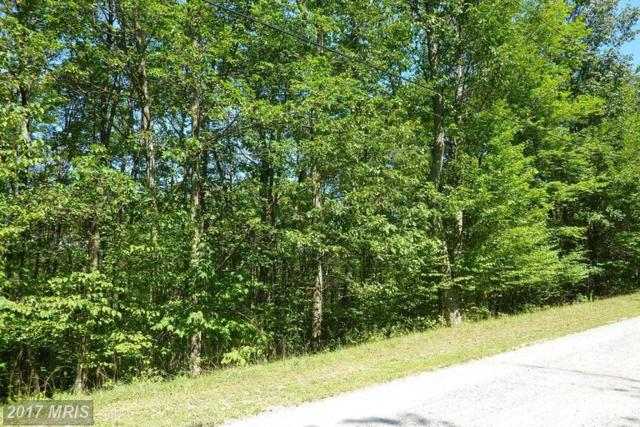 7 Yough View Drive, Oakland, MD 21550 (#GA8022424) :: Pearson Smith Realty