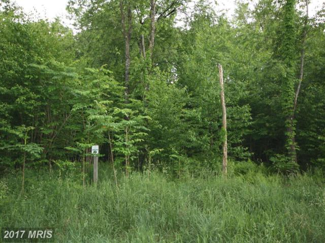 80 Lower Camp Road, McHenry, MD 21541 (#GA9680479) :: Pearson Smith Realty
