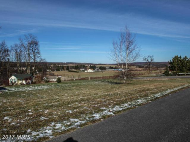 15 Settlers Pass, McHenry, MD 21541 (#GA9816028) :: Pearson Smith Realty