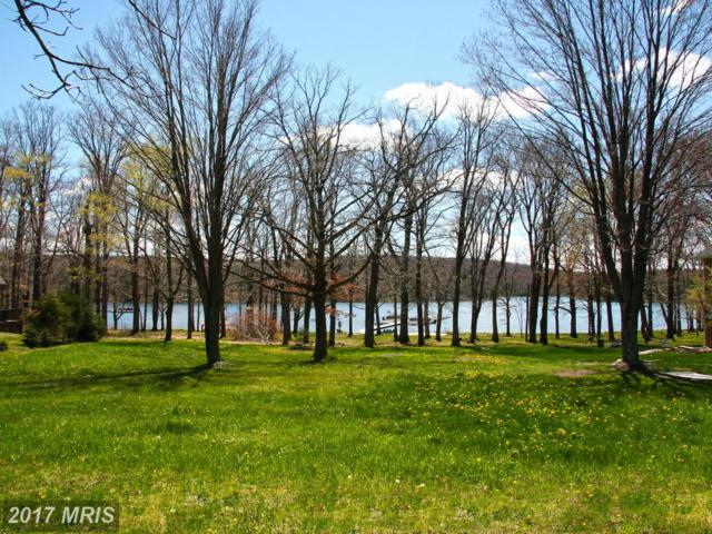 Stilwater Drive, Swanton, MD 21561 (#GA9930610) :: Pearson Smith Realty