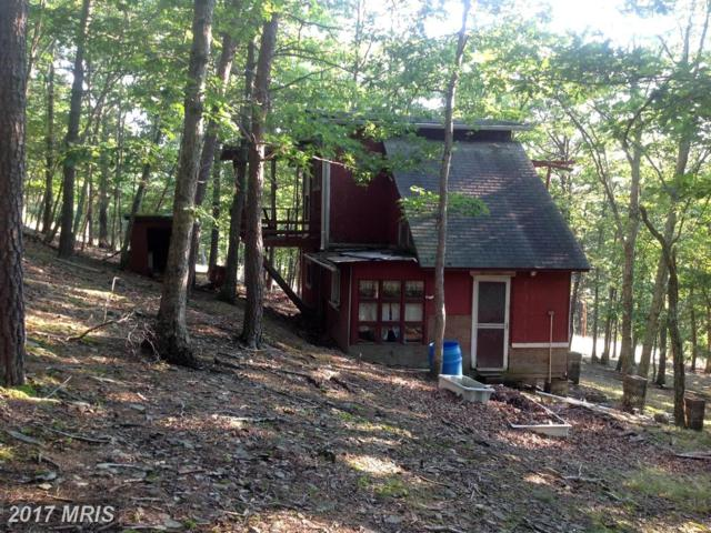 13 Thorn Run Road, Lahmansville, WV 26731 (#GT9510947) :: Pearson Smith Realty