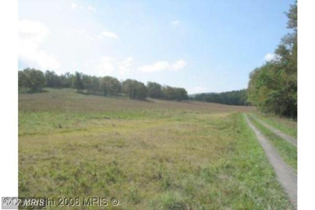 Off Rt 93, Mount Storm, WV 26739 (#GT9659762) :: Pearson Smith Realty