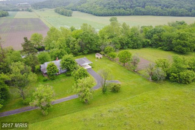 1 Welton Lane, Petersburg, WV 26847 (#GT9902685) :: Pearson Smith Realty