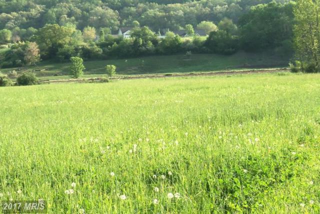 10 Silver River Acres, Moorefield, WV 26836 (#HD8626354) :: LoCoMusings