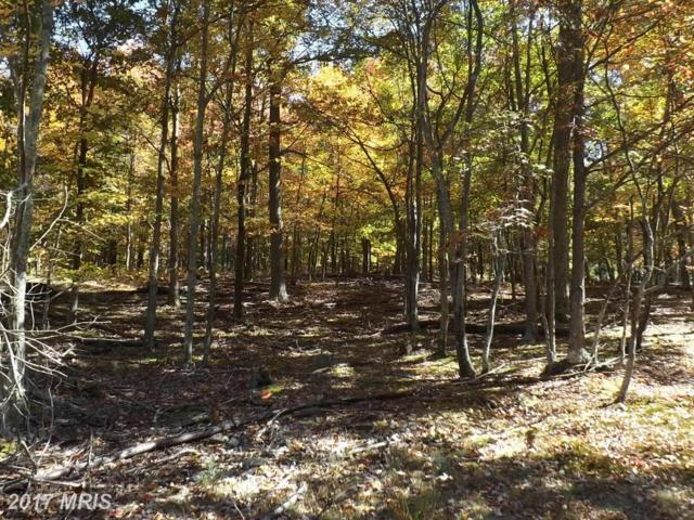 Timber Trail, Moorefield, WV 26836 (#HD9505314) :: LoCoMusings