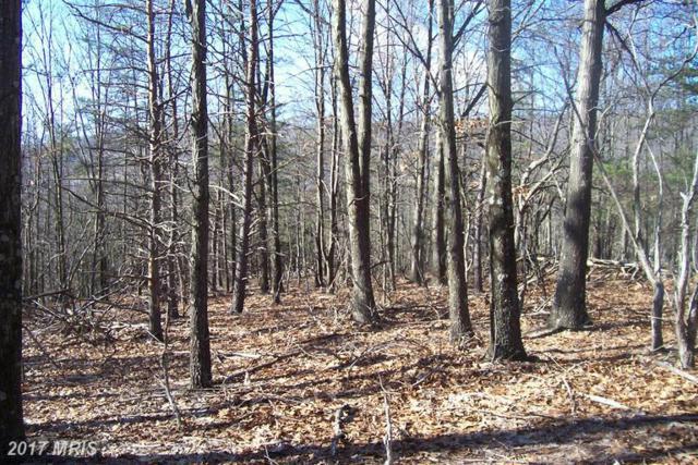 Lot 19 Canyon Creek Phase Ii, Moorefield, WV 26836 (#HD9568055) :: LoCoMusings