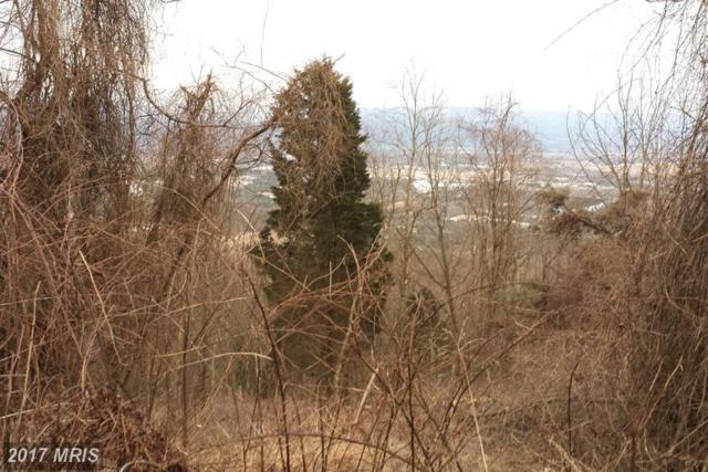 15 Highland Springs Road, Old Fields, WV 26845 (#HD9570747) :: LoCoMusings
