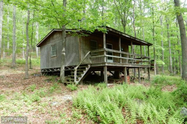 5-C Wild Turkey Ridge, Lost River, WV 26810 (#HD9608114) :: Pearson Smith Realty