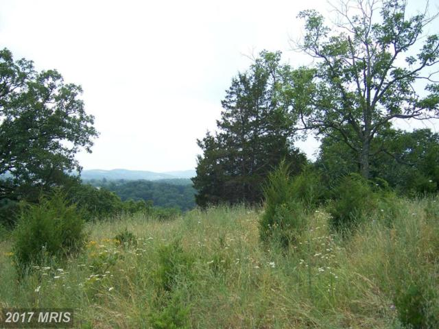 Lem Cleaver Road, Moorefield, WV 26836 (#HD9618783) :: Pearson Smith Realty