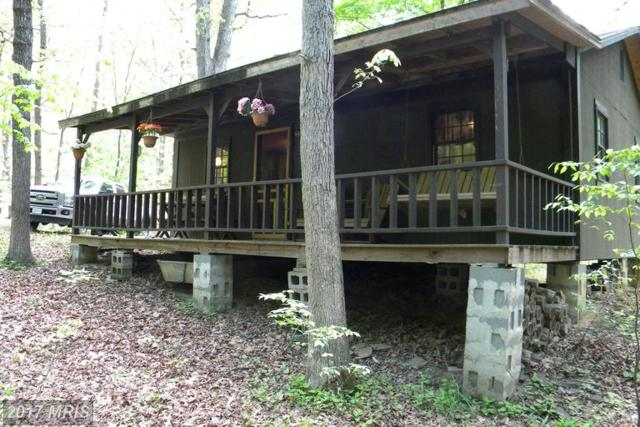 265 Pine Trail Drive, Moorefield, WV 26836 (#HD9663326) :: LoCoMusings