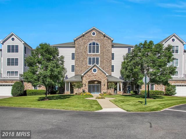 4740-A Water Park Drive A, Belcamp, MD 21017 (#HR9963755) :: The Bob & Ronna Group