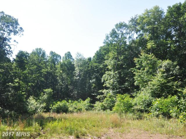LOT 9 Falconwood Drive, Bloomery, WV 26817 (#HS8374024) :: Pearson Smith Realty