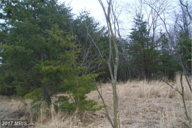 Proctor Road, Purgitsville, WV 26852 (#HS8561650) :: LoCoMusings
