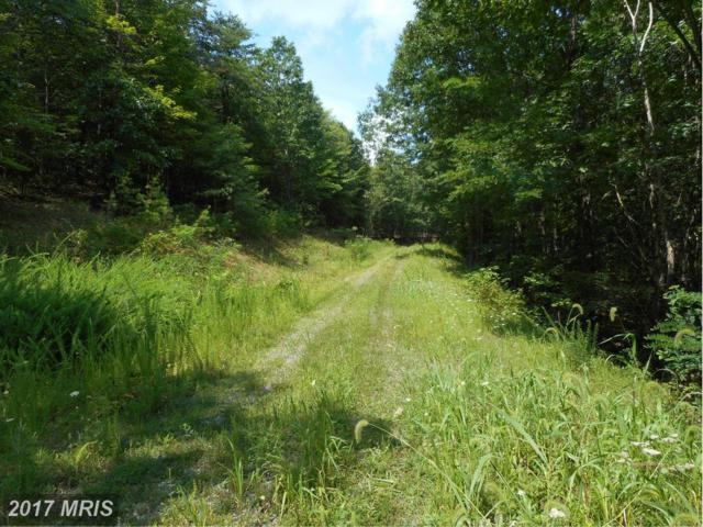 Off Rt 28 / Passin Wind H, Springfield, WV 26763 (#HS8716782) :: Pearson Smith Realty