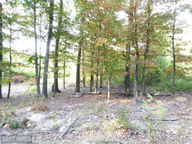 Capon Woods Resort Road, High View, WV 26808 (#HS9581306) :: Pearson Smith Realty