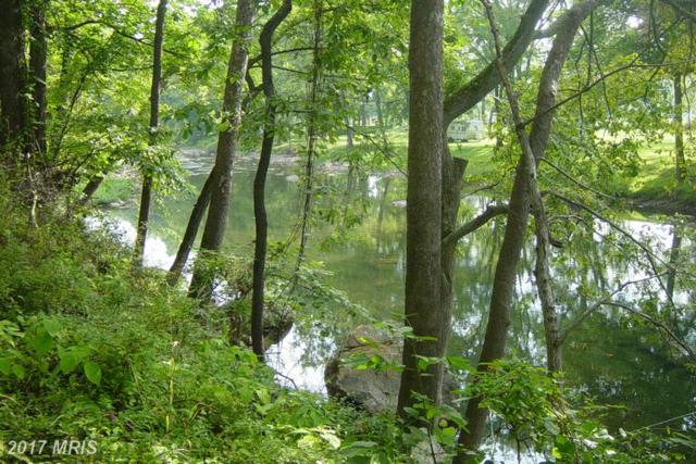 Mountain River Way, Springfield, WV 26763 (#HS9626358) :: LoCoMusings