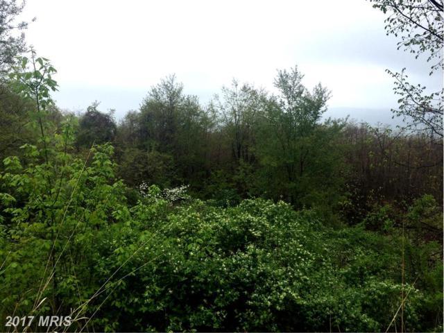 High Apple Mtn Road, Romney, WV 26757 (#HS9643978) :: LoCoMusings