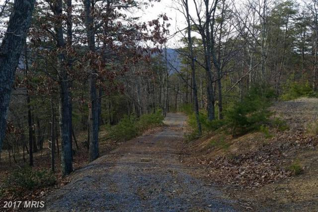 Brown Cardinal Ridge, Romney, WV 26757 (#HS9714975) :: LoCoMusings