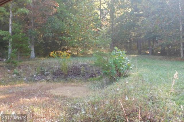 Lot 7 North River Rd, Augusta, WV 26704 (#HS9781038) :: Pearson Smith Realty