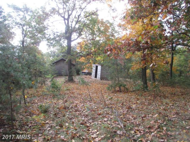 Rock Pile Rd/Campfire Road, Levels, WV 25431 (#HS9798446) :: Pearson Smith Realty