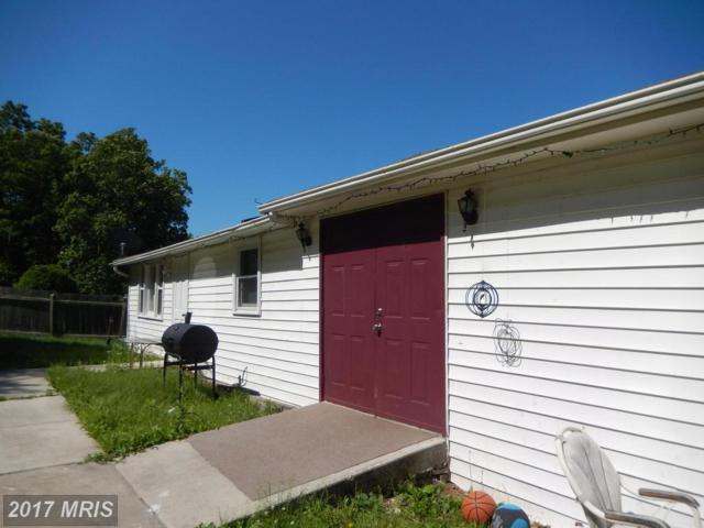 29 0 29 SOUTH P.O.BOX457,, Augusta, WV 26704 (#HS9885398) :: Pearson Smith Realty