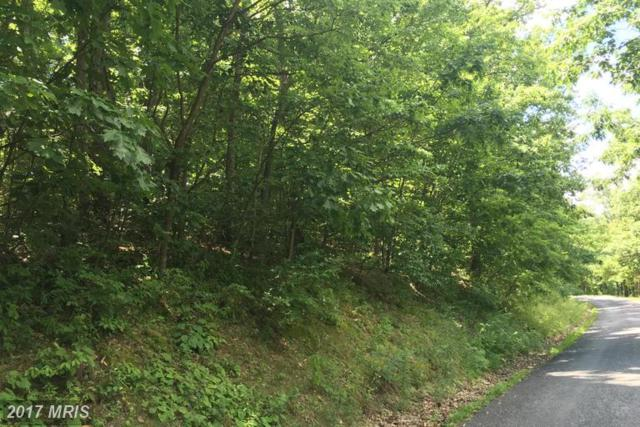 LOT #45 Timberlake Drive, James Creek, PA 16657 (#HU9706594) :: LoCoMusings