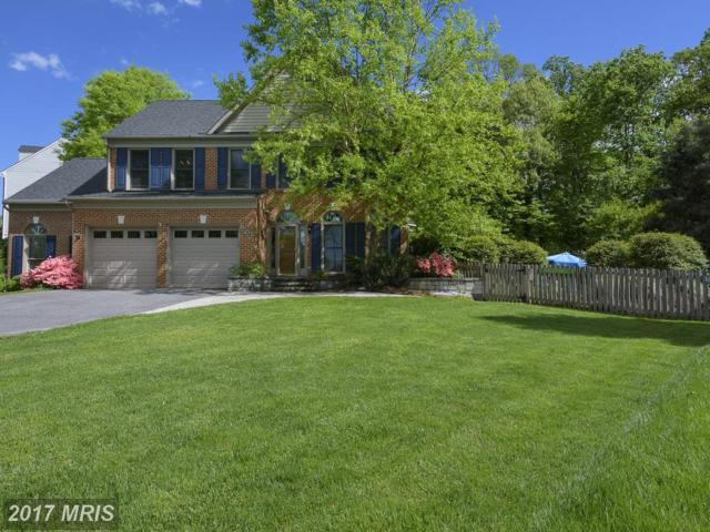 10307 Winstead Court, Ellicott City, MD 21042 (#HW10002287) :: Pearson Smith Realty