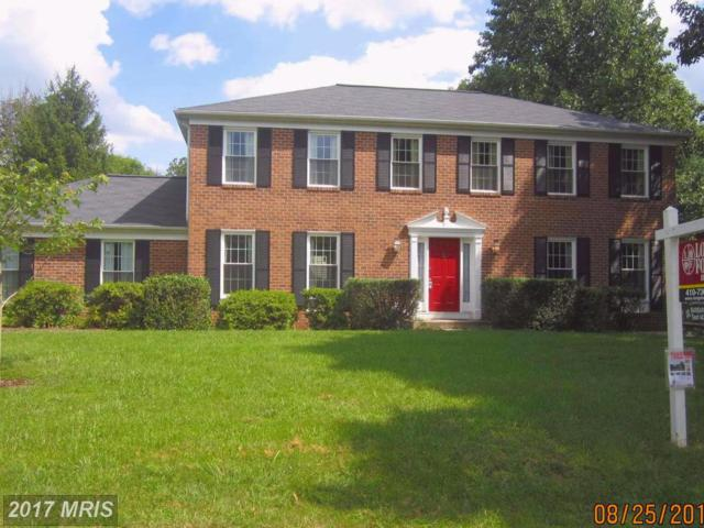 11600 Wave Lap Way, Columbia, MD 21044 (#HW10018566) :: Pearson Smith Realty