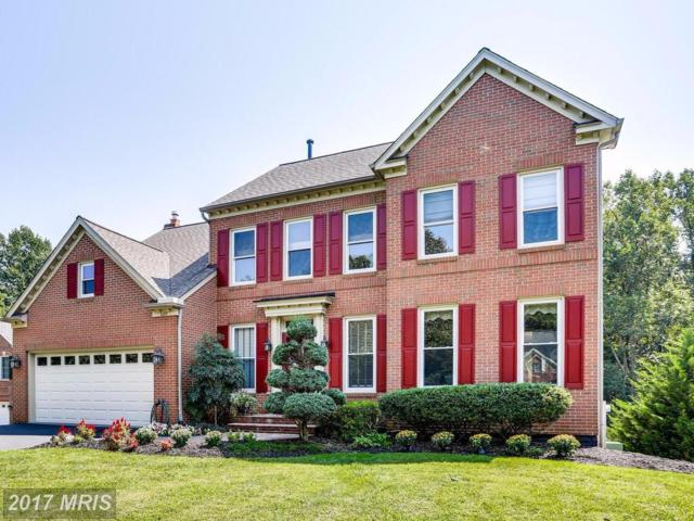 6209 Graftons View Court, Elkridge, MD 21075 (#HW10048807) :: Pearson Smith Realty
