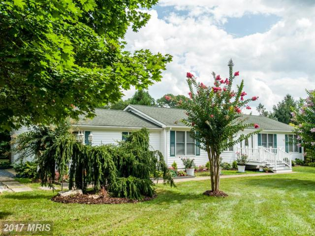 13383 Triadelphia Road, Ellicott City, MD 21042 (#HW10059488) :: Pearson Smith Realty