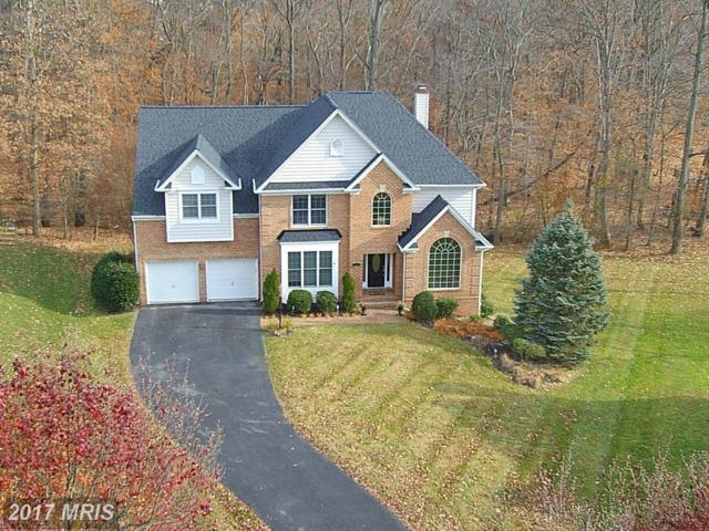 7317 Wood Rush Court, Elkridge, MD 21075 (#HW10106074) :: Pearson Smith Realty