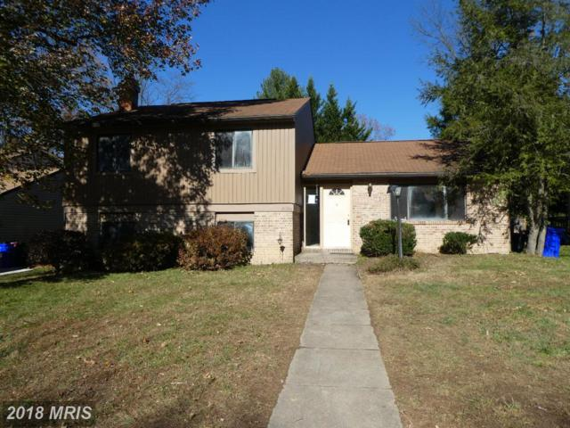 10358 Whitewasher Way, Columbia, MD 21044 (#HW10106547) :: Pearson Smith Realty