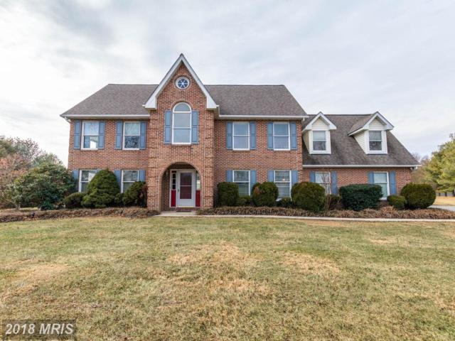 17314 Pink Dogwood Court, Mount Airy, MD 21771 (#HW10136709) :: The Savoy Team at Keller Williams Integrity