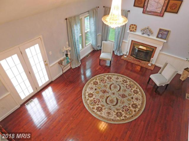 8720 Haycarriage Court, Ellicott City, MD 21043 (#HW10245386) :: Wes Peters Group