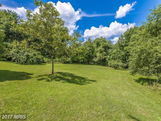 16395 Camalo Drive, Mount Airy, MD 21771 (#HW9881581) :: Pearson Smith Realty