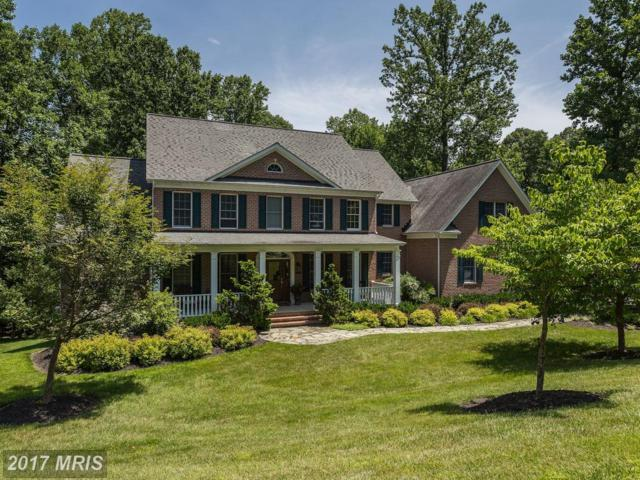 12318 Fawn River Way, Ellicott City, MD 21042 (#HW9921933) :: Pearson Smith Realty