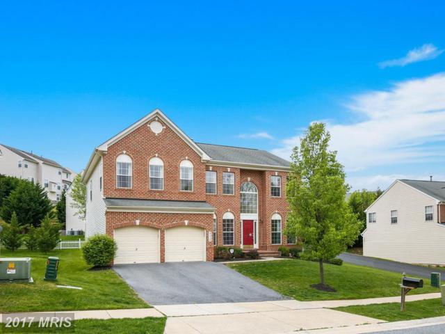 8026 High Castle Road, Ellicott City, MD 21043 (#HW9923244) :: Pearson Smith Realty