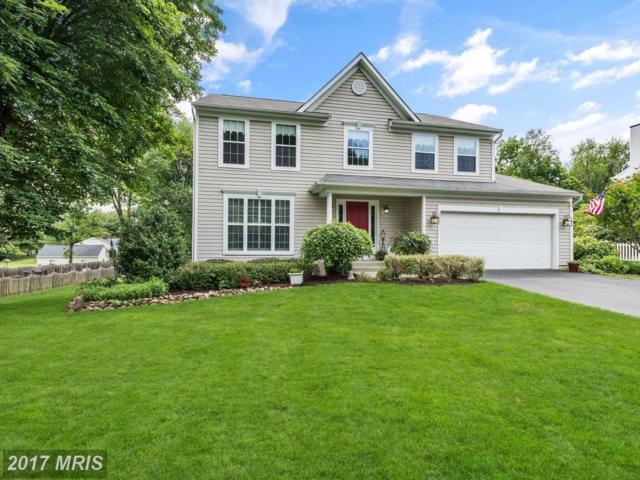 10867 Harmel Drive, Columbia, MD 21044 (#HW9963890) :: Pearson Smith Realty