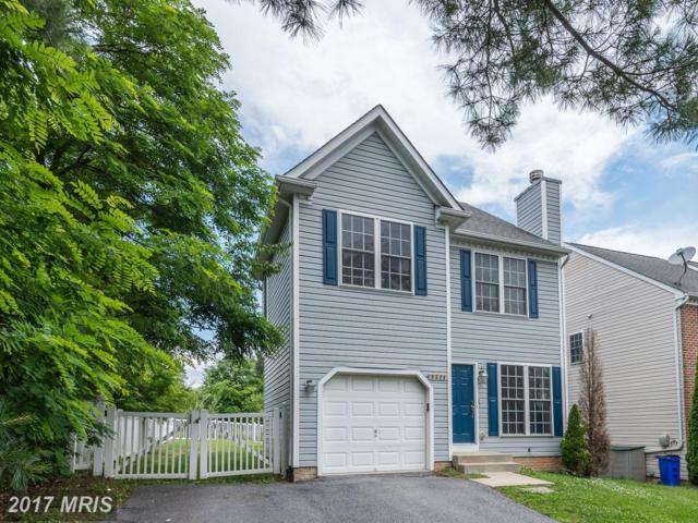 6524 Ivy Terrace, Elkridge, MD 21075 (#HW9971734) :: LoCoMusings