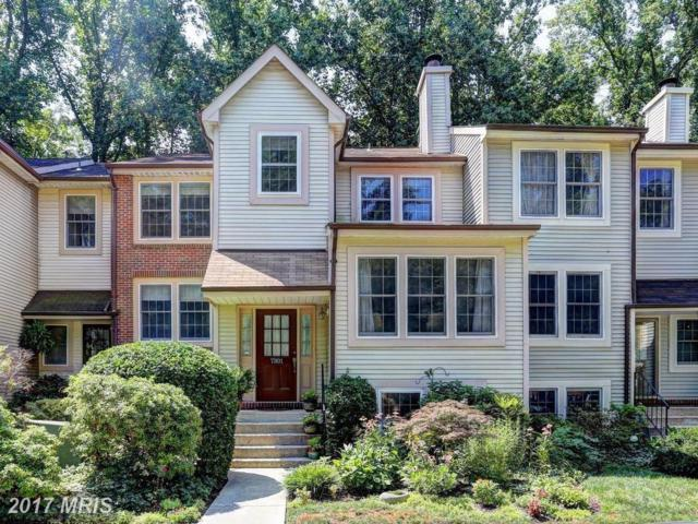 7301 Swan Point Way 14-6, Columbia, MD 21045 (#HW9974333) :: Pearson Smith Realty