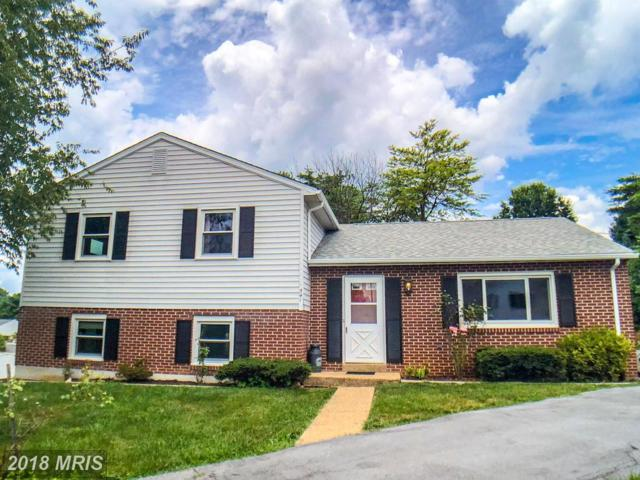 541 Rider Court, Charles Town, WV 25414 (#JF10292916) :: Hill Crest Realty